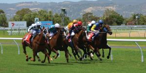 postID12 sports betting 300x150 - postID12-sports-betting